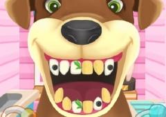 Cuide dos Dentes dos Animais
