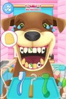 Cuide dos Dentes dos Animais - screenshot 1